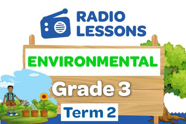 Grade 3 Environmental  Radio Lessons