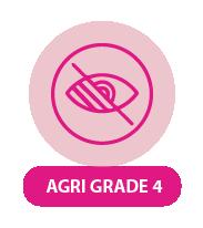 SNE Grade 4 Agriculture